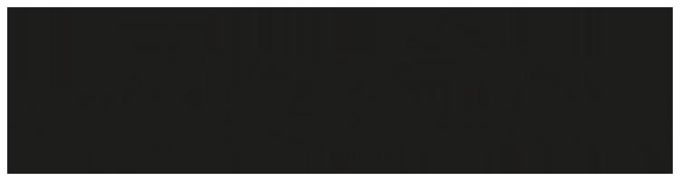 www.thijmenapswoude.com Logo
